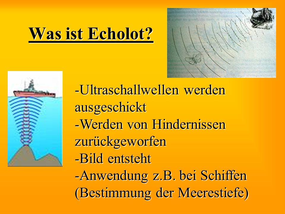 Was ist Echolot Ultraschallwellen werden ausgeschickt
