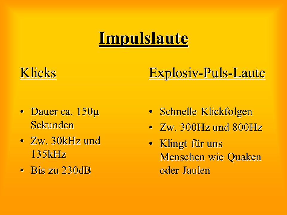 Impulslaute Klicks Explosiv-Puls-Laute Dauer ca. 150µ Sekunden