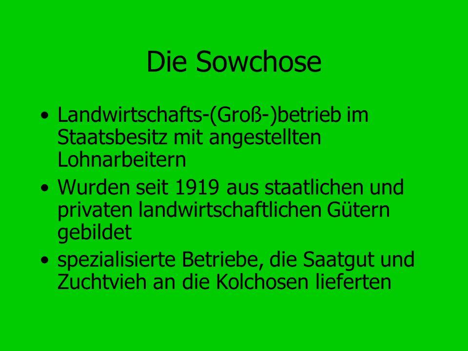 Die Sowchose Landwirtschafts-(Groß-)betrieb im Staatsbesitz mit angestellten Lohnarbeitern.