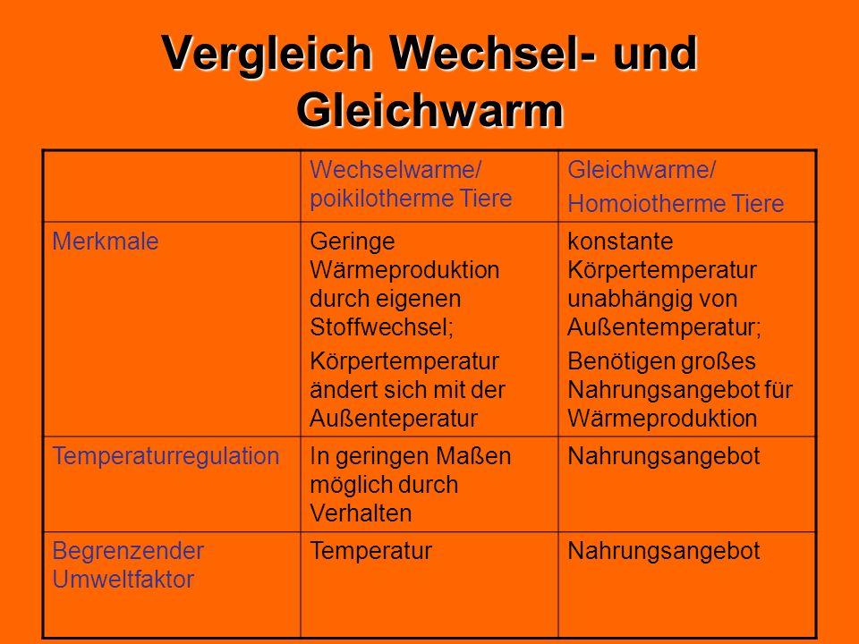 Vergleich Wechsel- und Gleichwarm