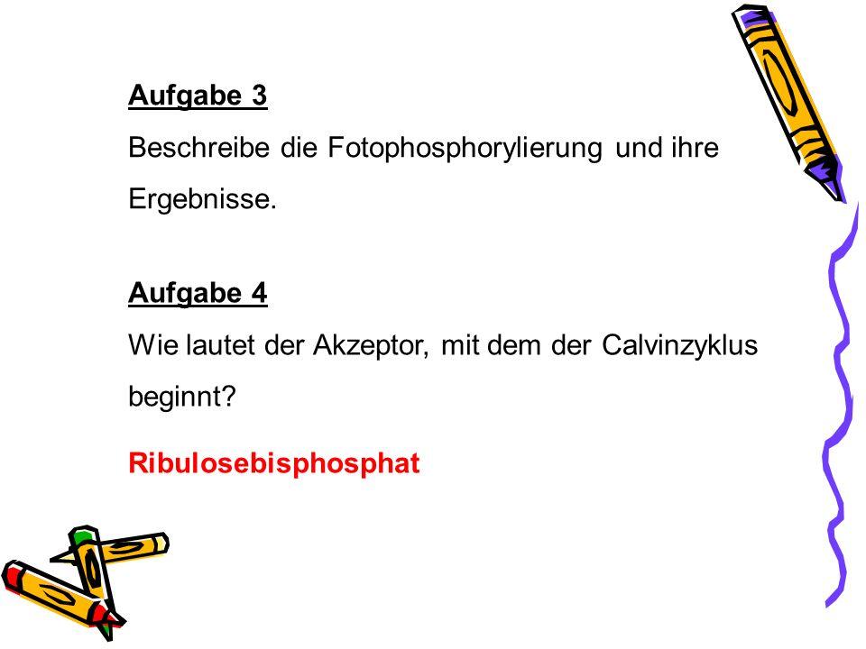 Aufgabe 3 Beschreibe die Fotophosphorylierung und ihre. Ergebnisse. Aufgabe 4. Wie lautet der Akzeptor, mit dem der Calvinzyklus.
