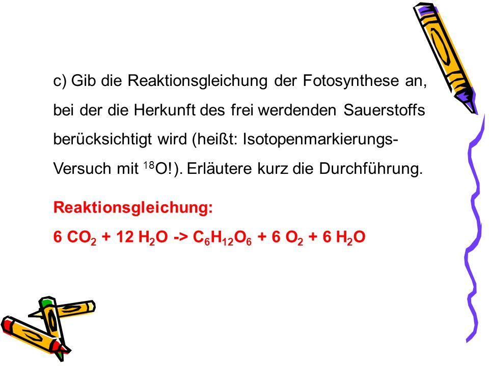 c) Gib die Reaktionsgleichung der Fotosynthese an,