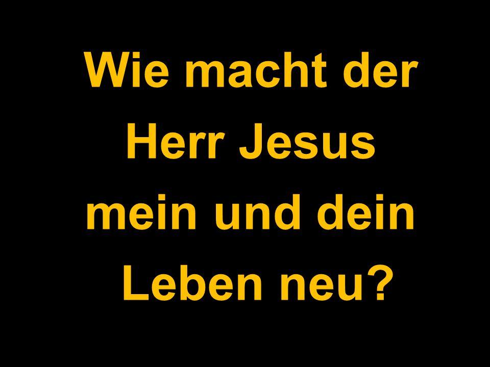 Wie macht der Herr Jesus mein und dein Leben neu