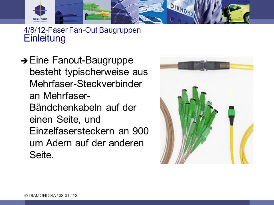 4/8/12-Faser Fan-Out Baugruppen Einleitung