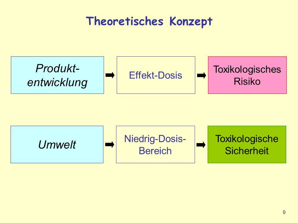 Theoretisches Konzept