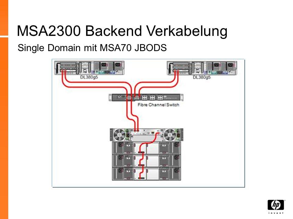 MSA2300 Backend Verkabelung
