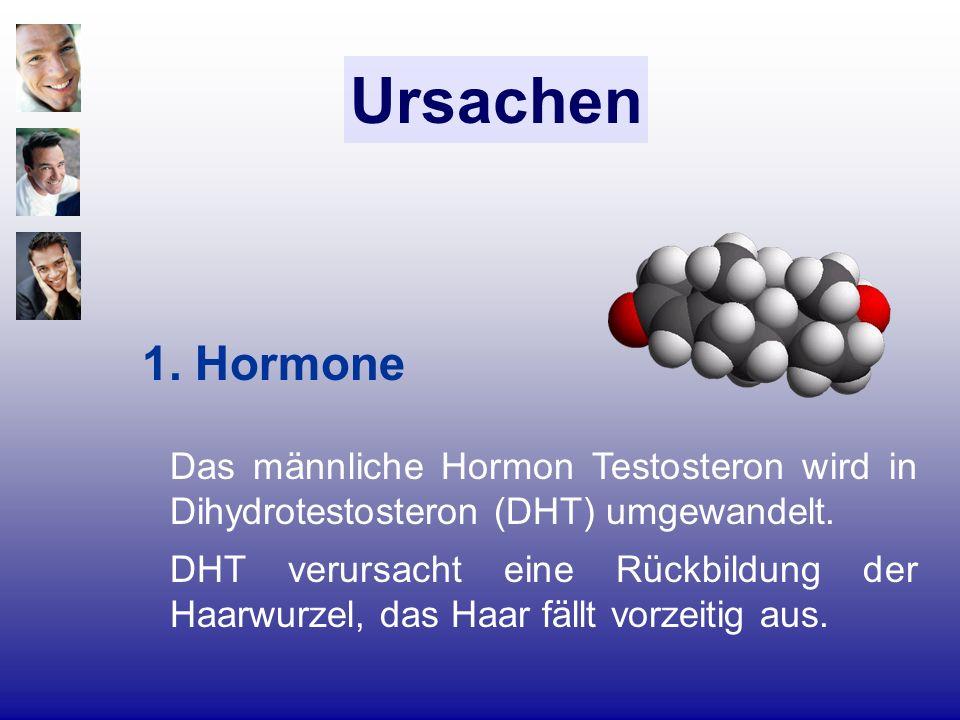 Ursachen 1. Hormone. Das männliche Hormon Testosteron wird in Dihydrotestosteron (DHT) umgewandelt.
