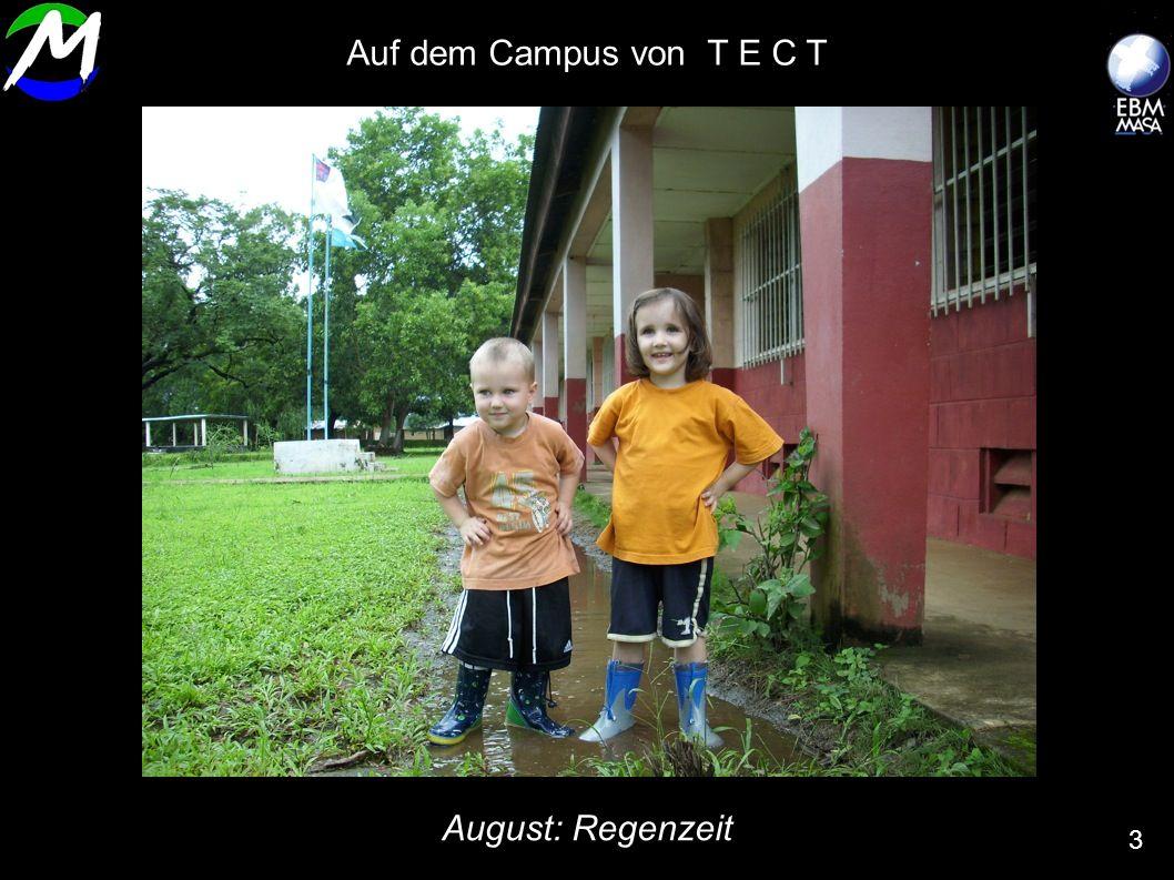 Auf dem Campus von T E C T August: Regenzeit