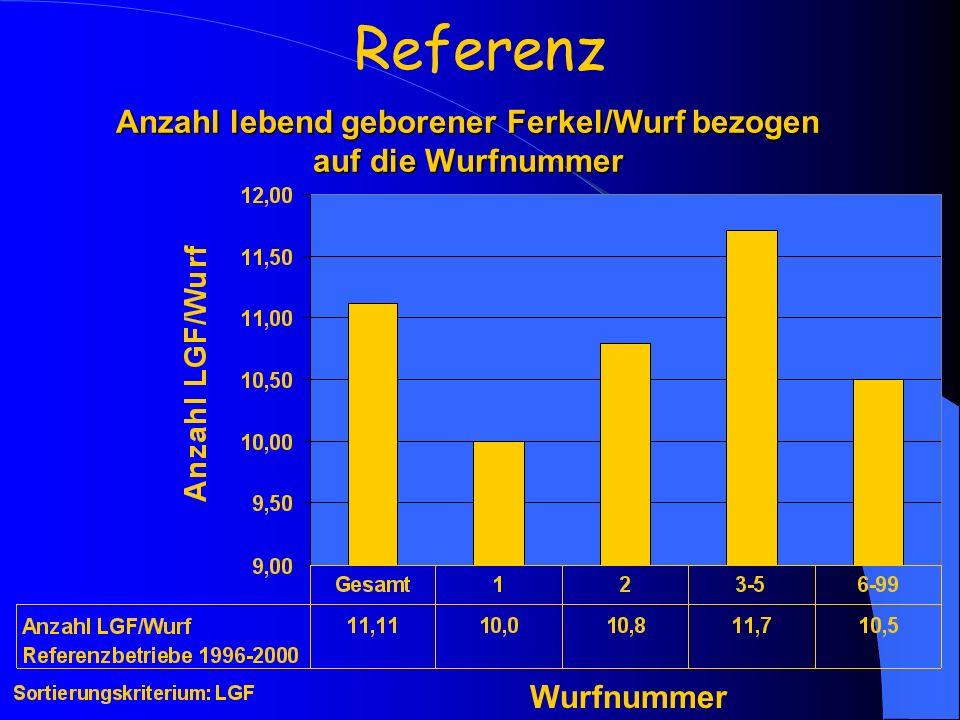 Anzahl lebend geborener Ferkel/Wurf bezogen auf die Wurfnummer