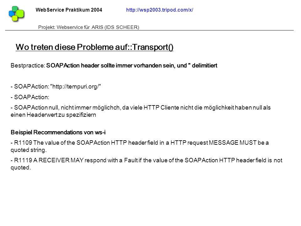 Wo treten diese Probleme auf::Transport()
