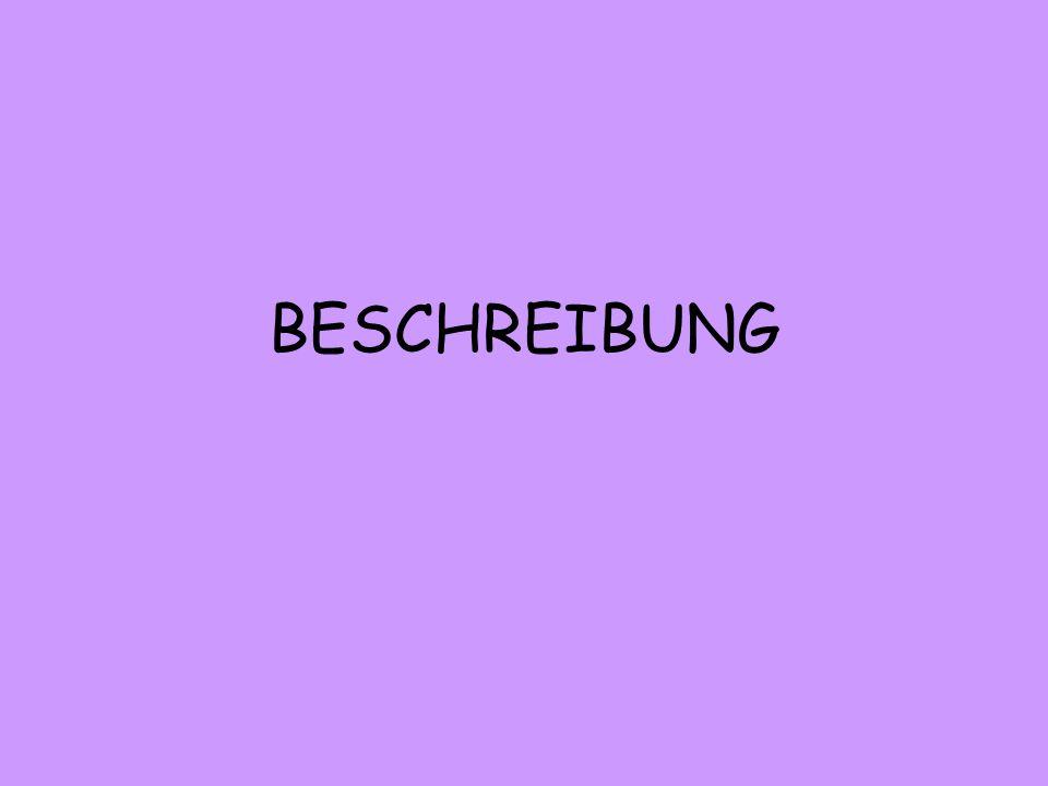 BESCHREIBUNG