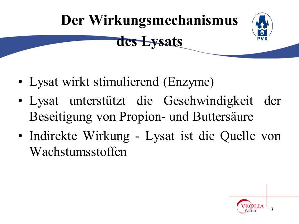 Der Wirkungsmechanismus des Lysats