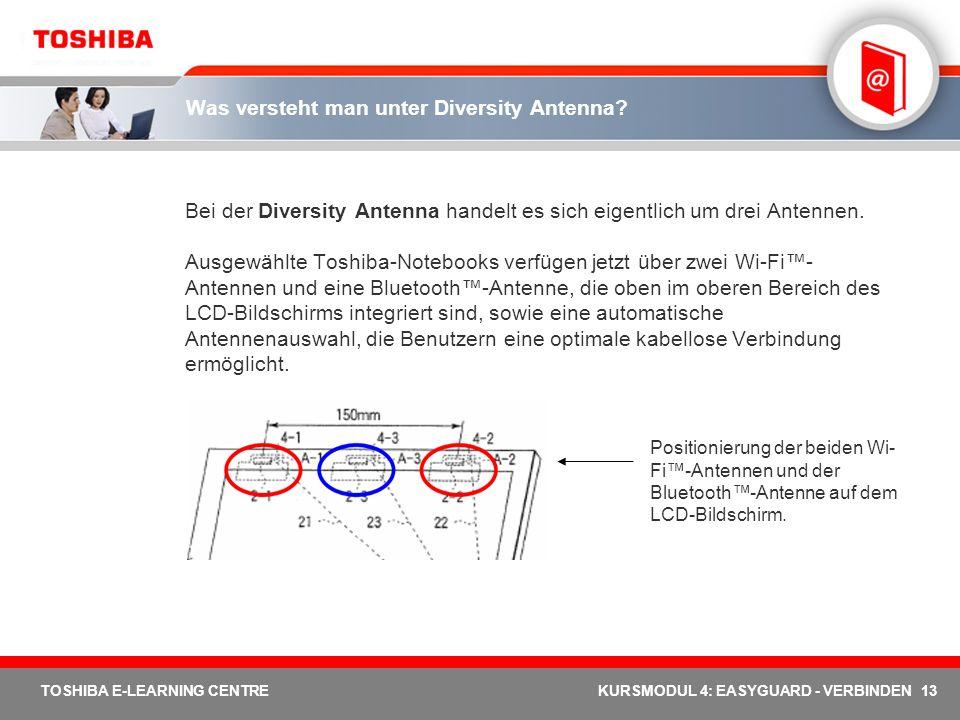 Was versteht man unter Diversity Antenna