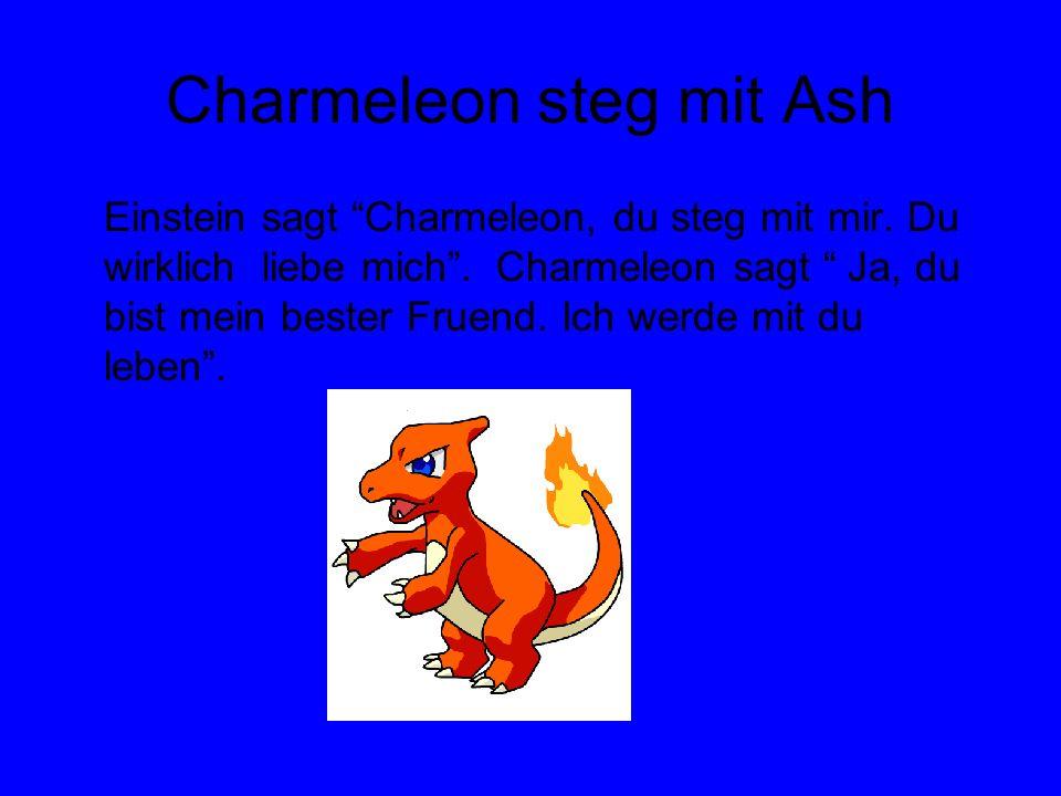 Charmeleon steg mit Ash