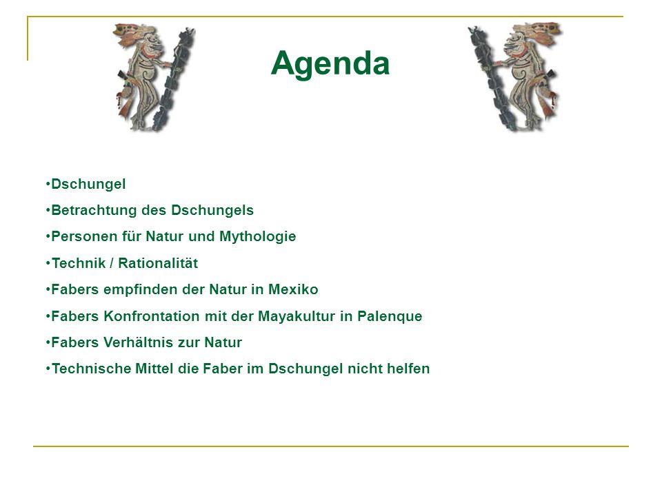 Agenda Dschungel Betrachtung des Dschungels