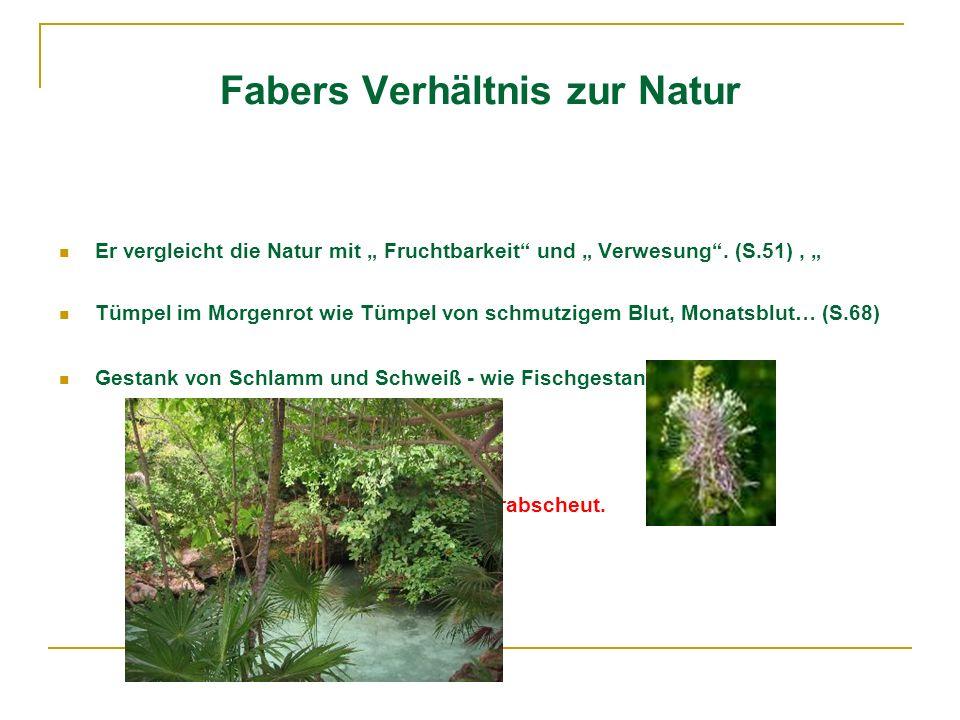Fabers Verhältnis zur Natur