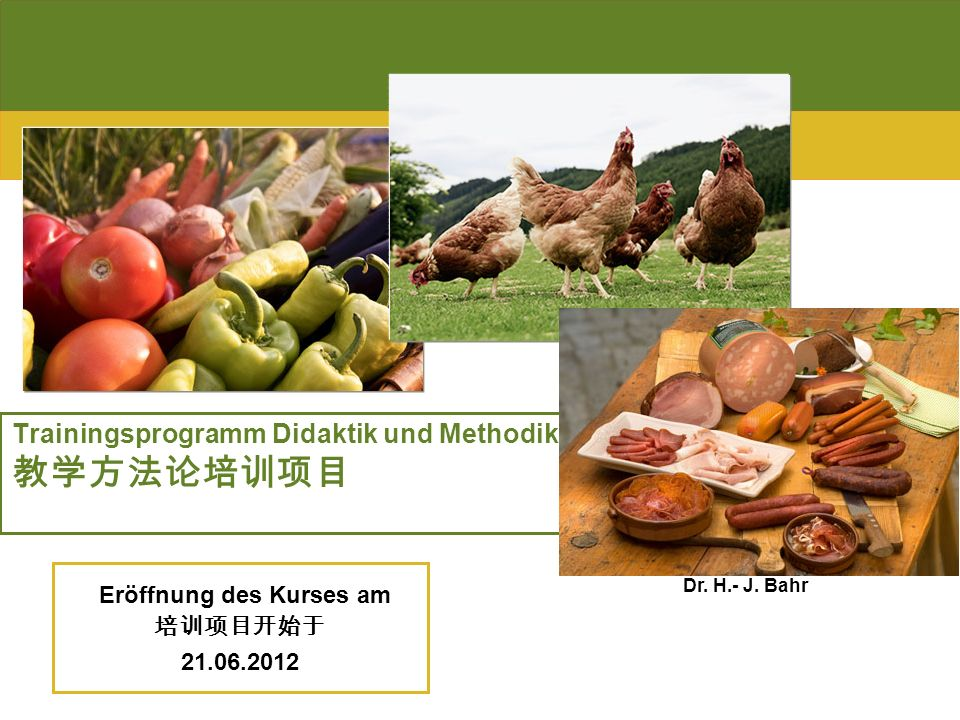 Trainingsprogramm Didaktik und Methodik 教学方法论培训项目