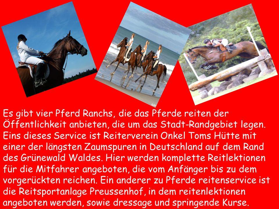 Es gibt vier Pferd Ranchs, die das Pferde reiten der Öffentlichkeit anbieten, die um das Stadt-Randgebiet legen.