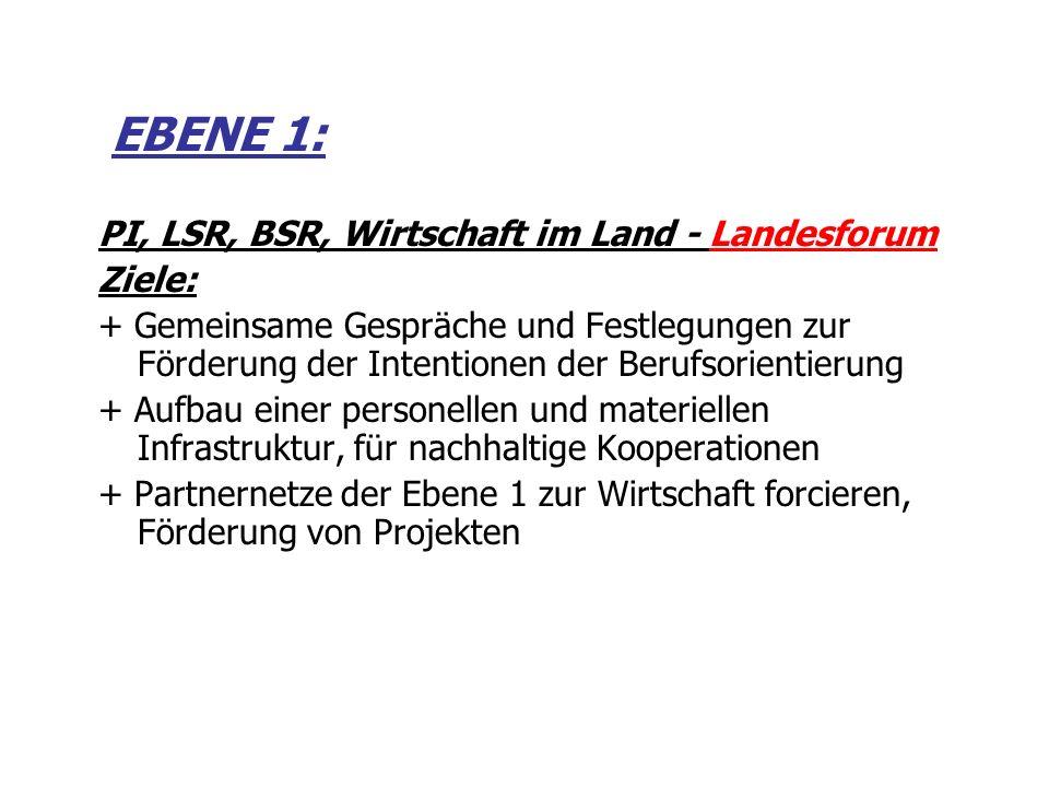 EBENE 1: PI, LSR, BSR, Wirtschaft im Land - Landesforum Ziele: