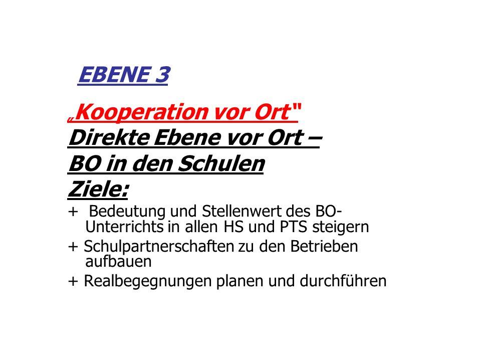 EBENE 3 Direkte Ebene vor Ort – BO in den Schulen Ziele: