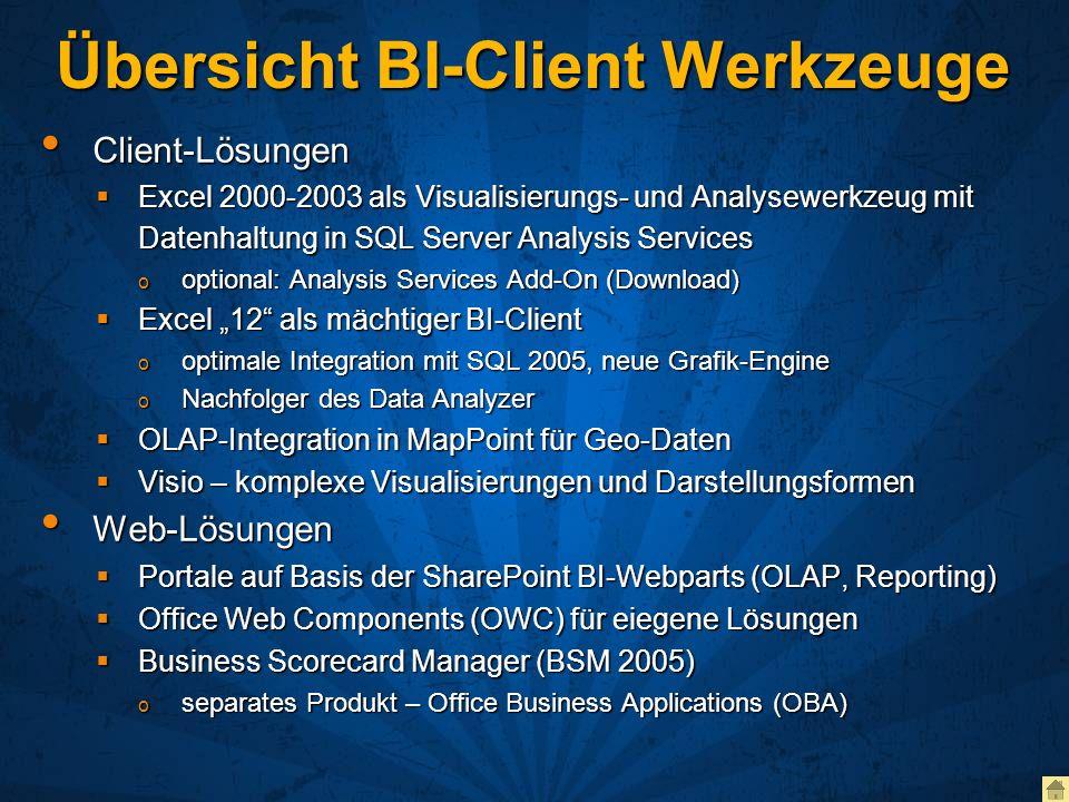 Übersicht BI-Client Werkzeuge