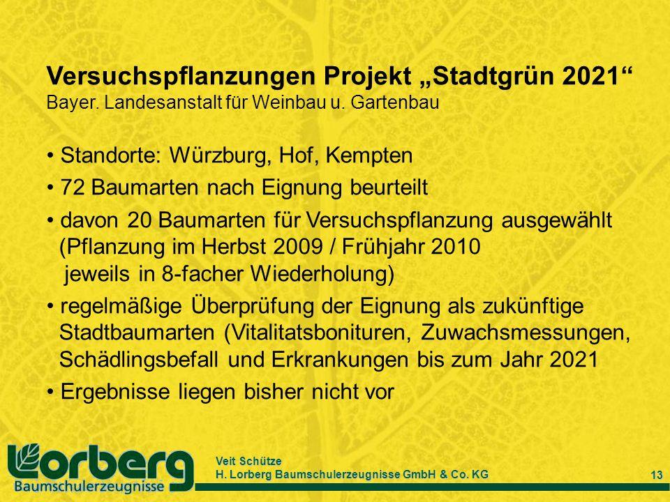 """Versuchspflanzungen Projekt """"Stadtgrün 2021"""