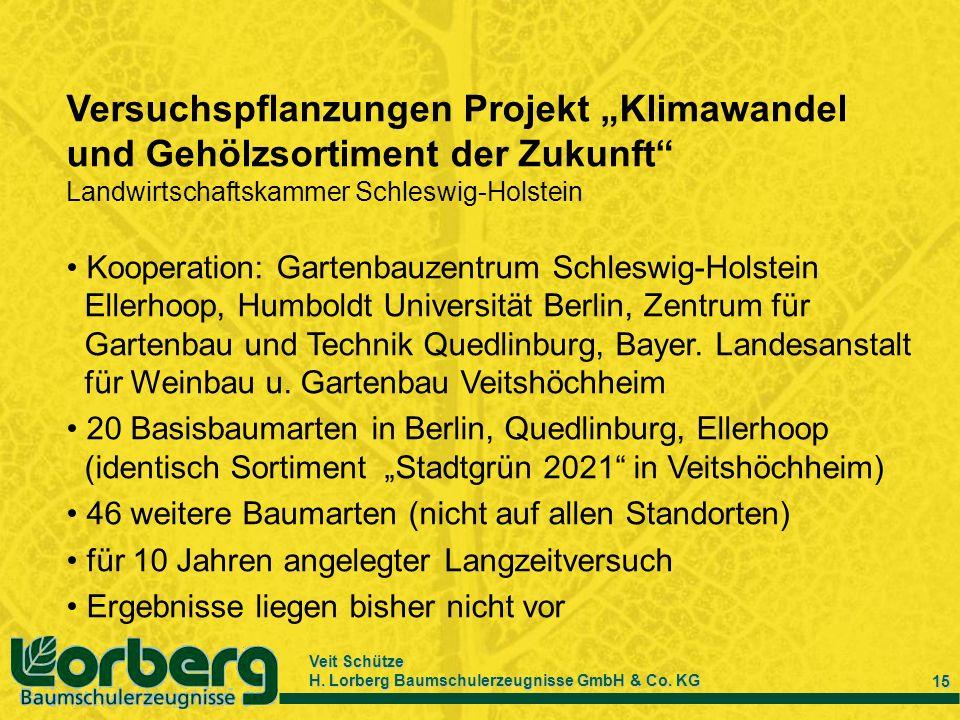 """Versuchspflanzungen Projekt """"Klimawandel und Gehölzsortiment der Zukunft"""