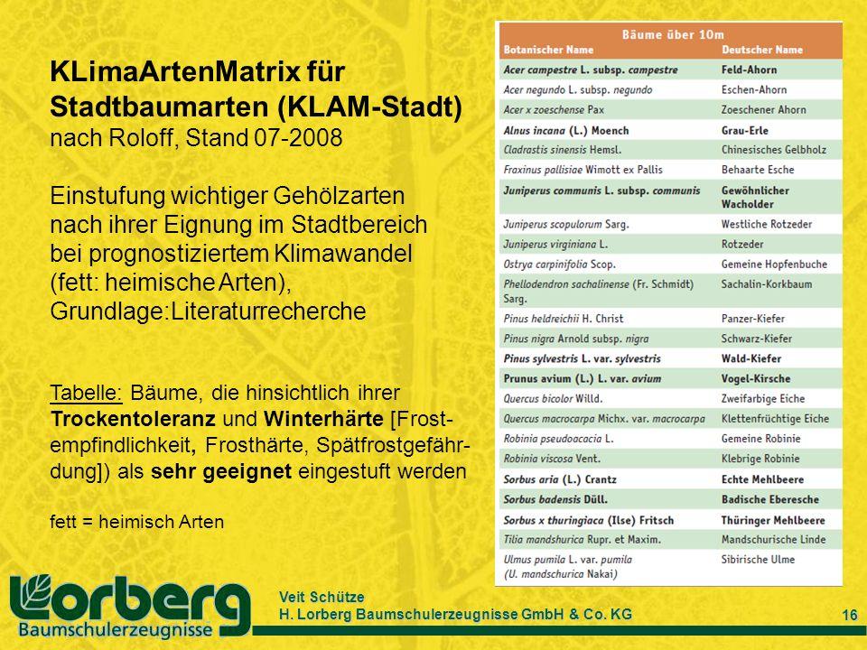 KLimaArtenMatrix für Stadtbaumarten (KLAM-Stadt)
