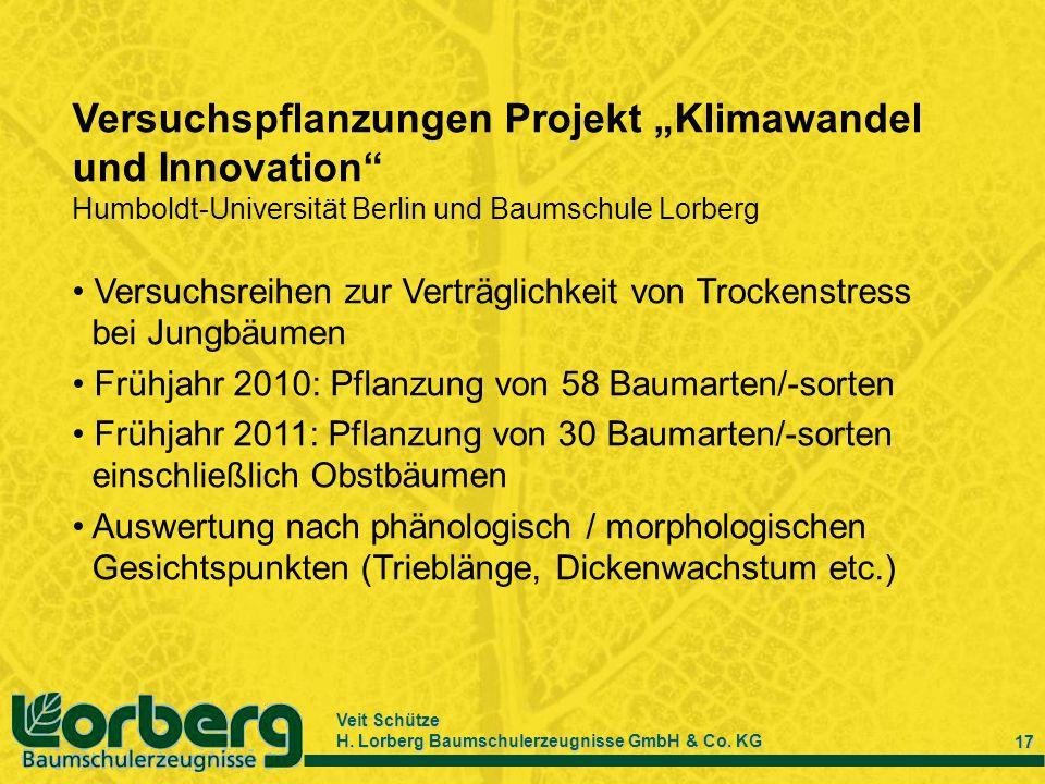"""Versuchspflanzungen Projekt """"Klimawandel und Innovation"""