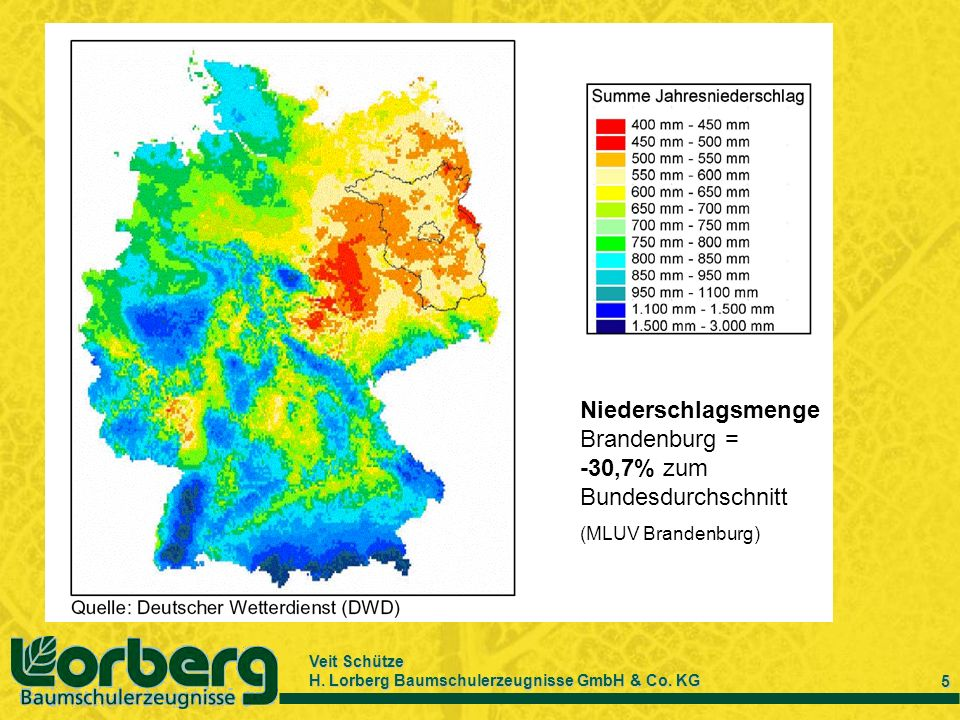 Niederschlagsmenge Brandenburg = -30,7% zum Bundesdurchschnitt