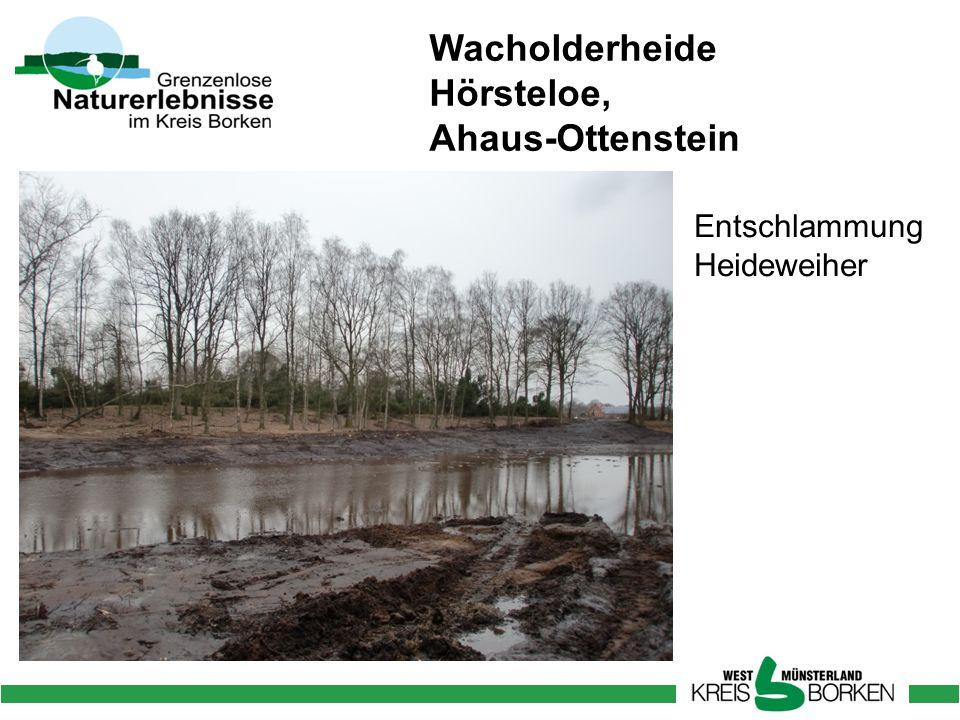 Wacholderheide Hörsteloe, Ahaus-Ottenstein