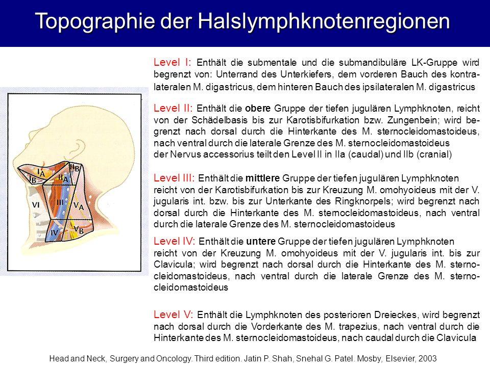 Topographie der Halslymphknotenregionen