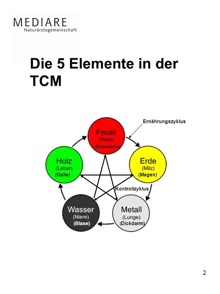 Die 5 Elemente in der TCM Ernährungszyklus (Galle) Kontrollzyklus