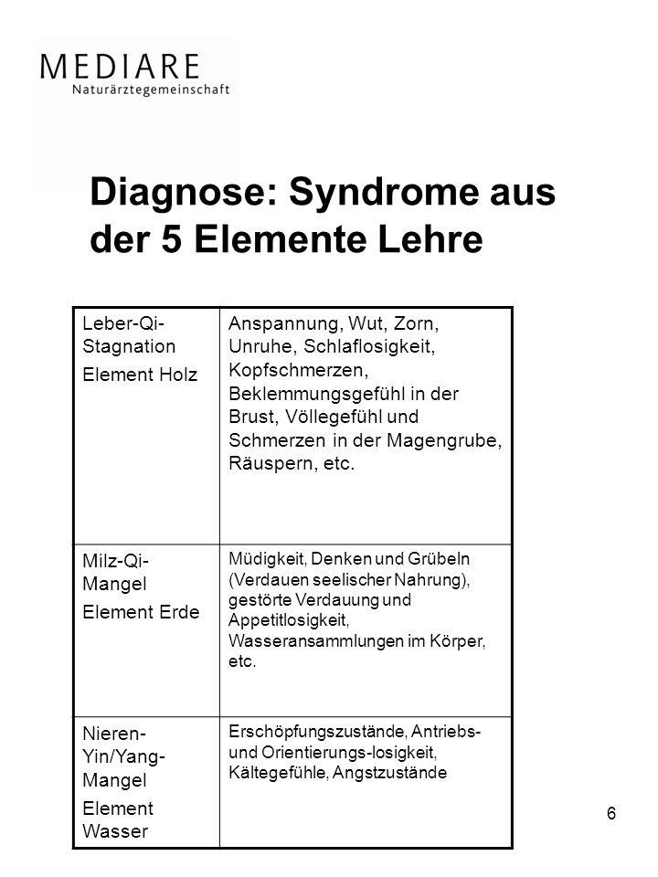 Diagnose: Syndrome aus der 5 Elemente Lehre