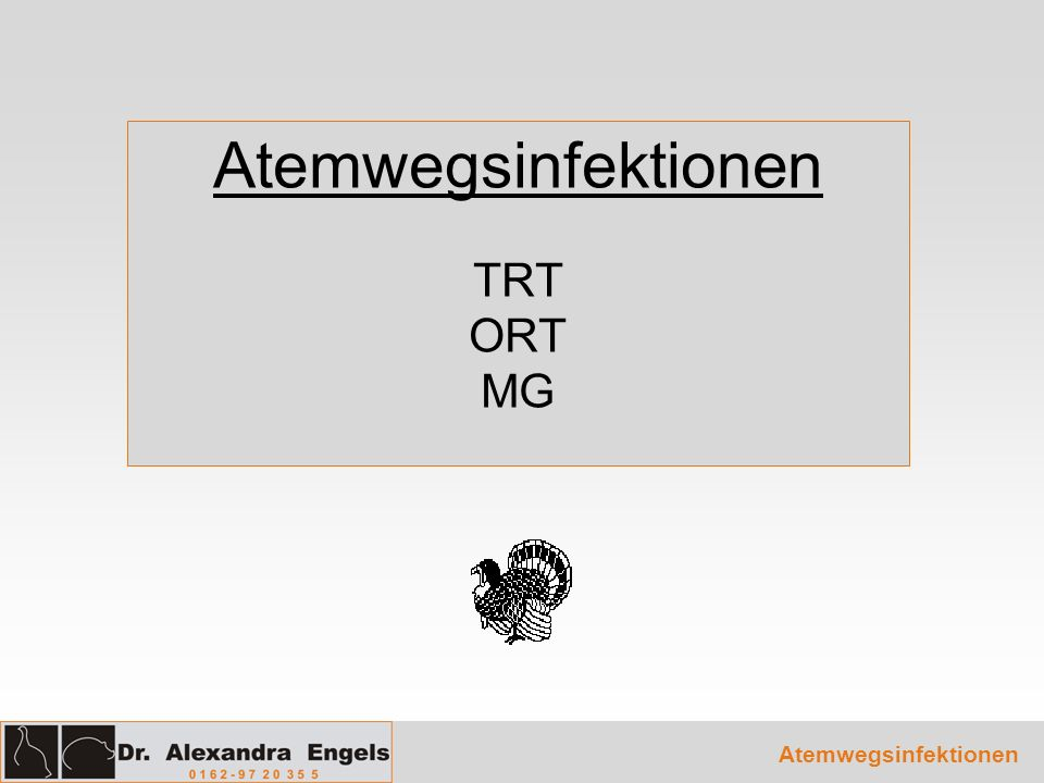 Atemwegsinfektionen TRT ORT MG