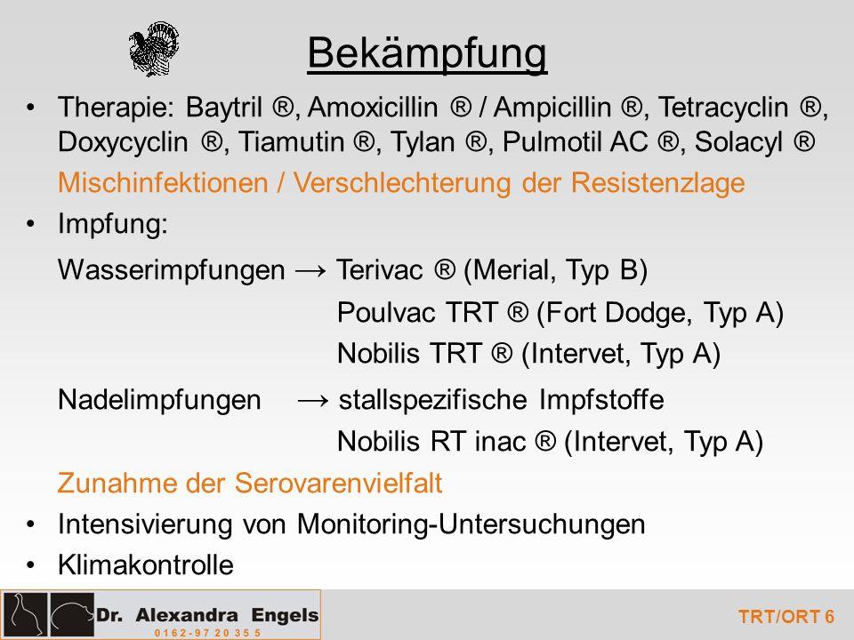 Bekämpfung Therapie: Baytril ®, Amoxicillin ® / Ampicillin ®, Tetracyclin ®, Doxycyclin ®, Tiamutin ®, Tylan ®, Pulmotil AC ®, Solacyl ®