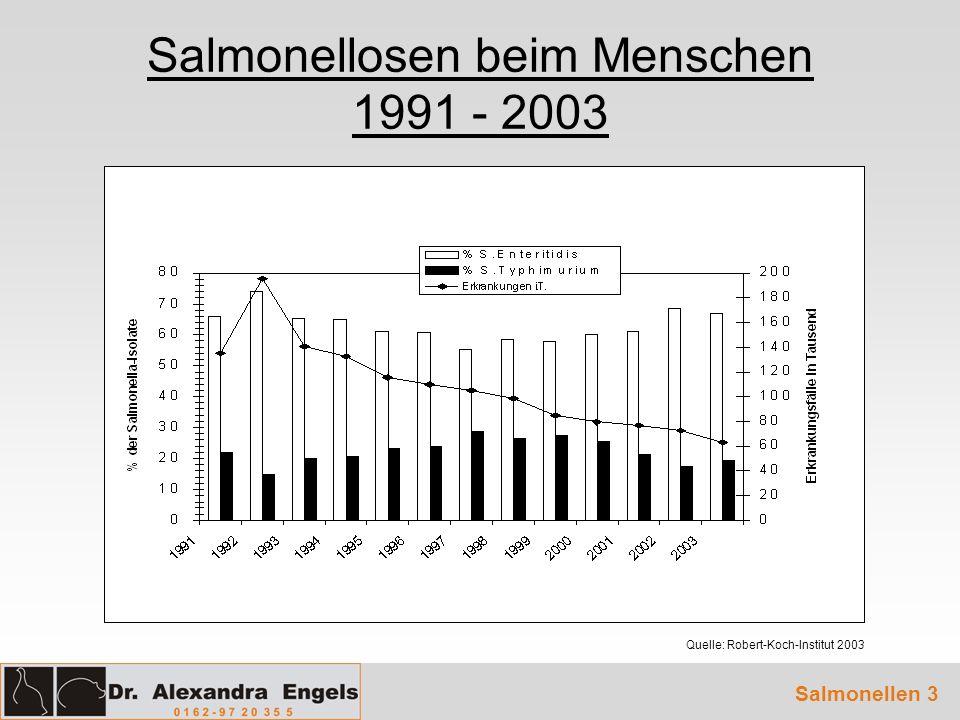 Salmonellosen beim Menschen 1991 - 2003