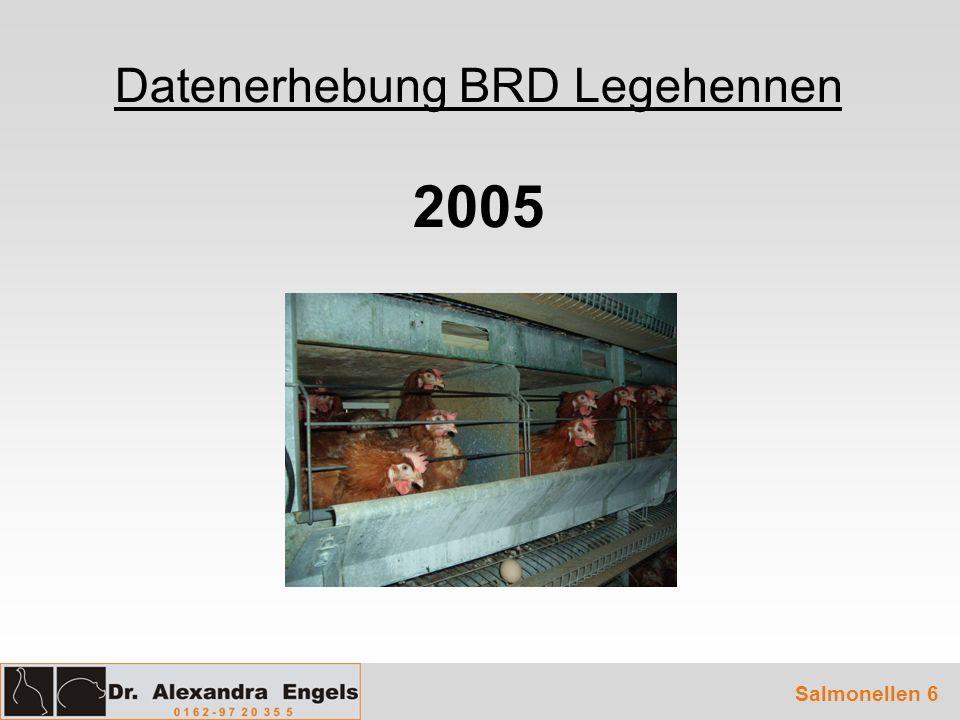 Datenerhebung BRD Legehennen 2005