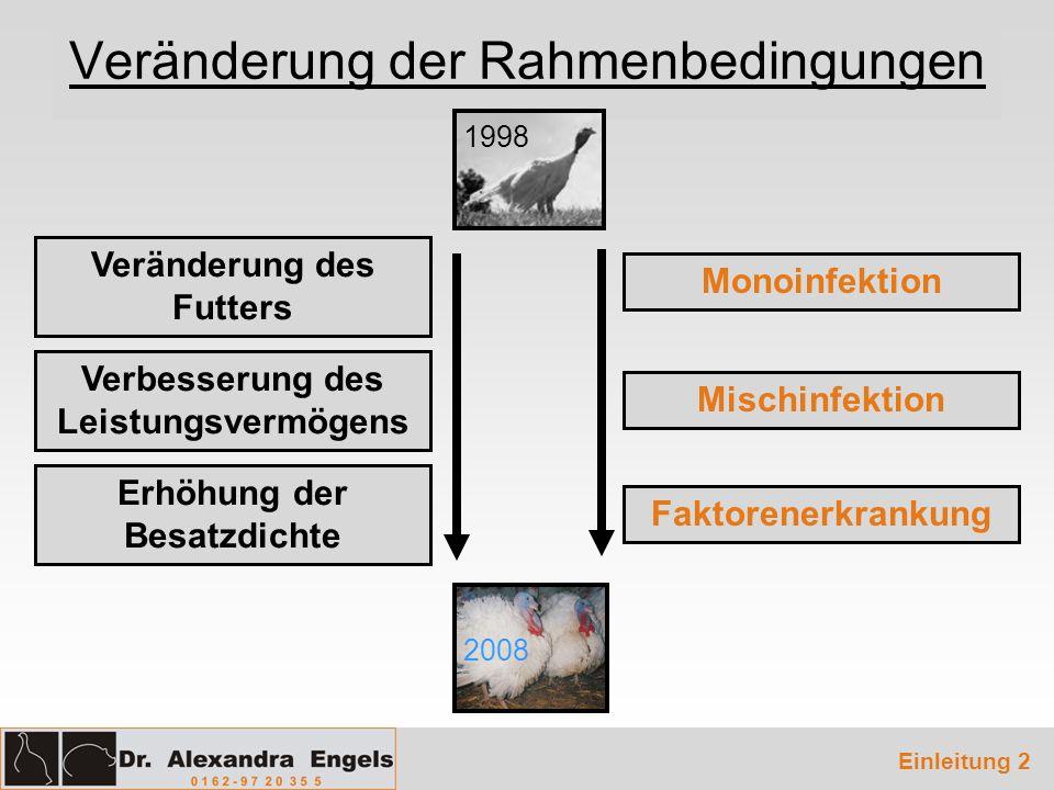 Veränderung der Rahmenbedingungen