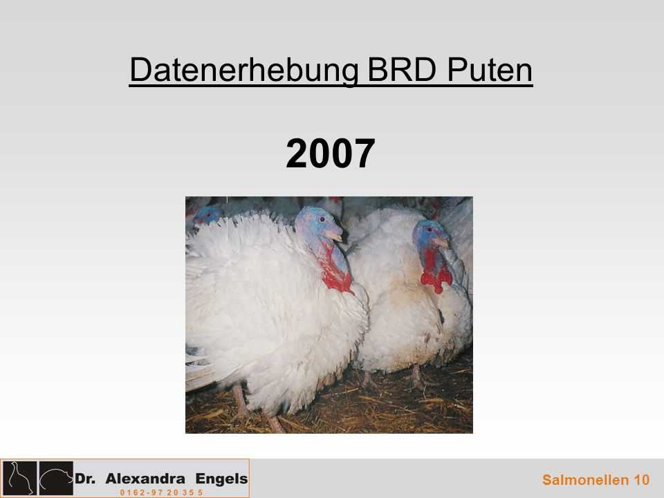 Datenerhebung BRD Puten 2007