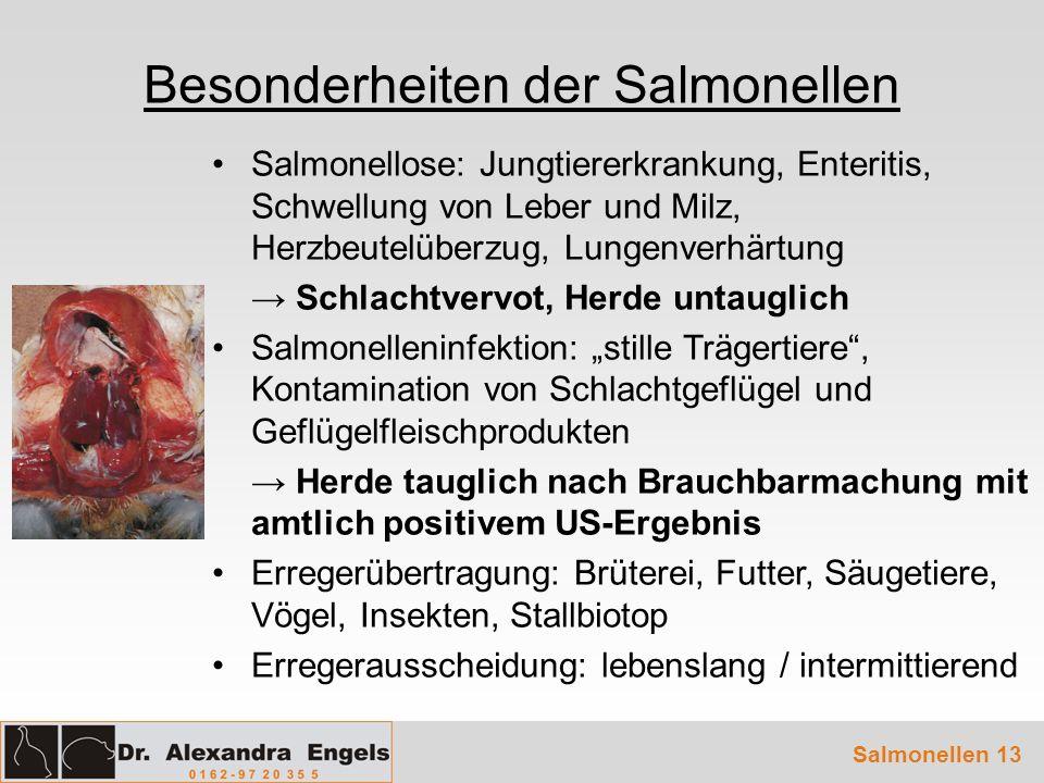 Besonderheiten der Salmonellen