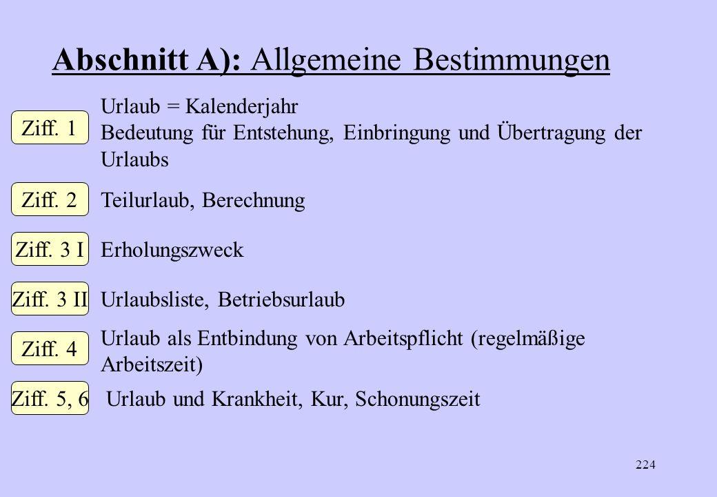 Abschnitt A): Allgemeine Bestimmungen