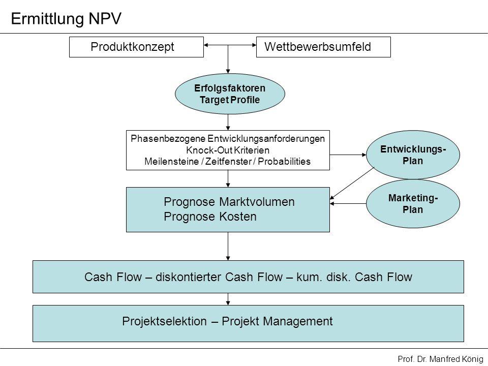 Ermittlung NPV Produktkonzept Wettbewerbsumfeld Prognose Marktvolumen