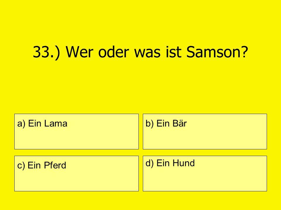 33.) Wer oder was ist Samson