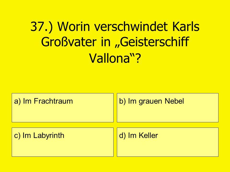"""37.) Worin verschwindet Karls Großvater in """"Geisterschiff Vallona"""