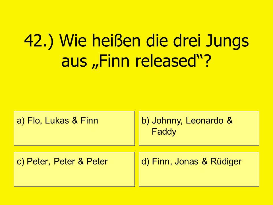 """42.) Wie heißen die drei Jungs aus """"Finn released"""