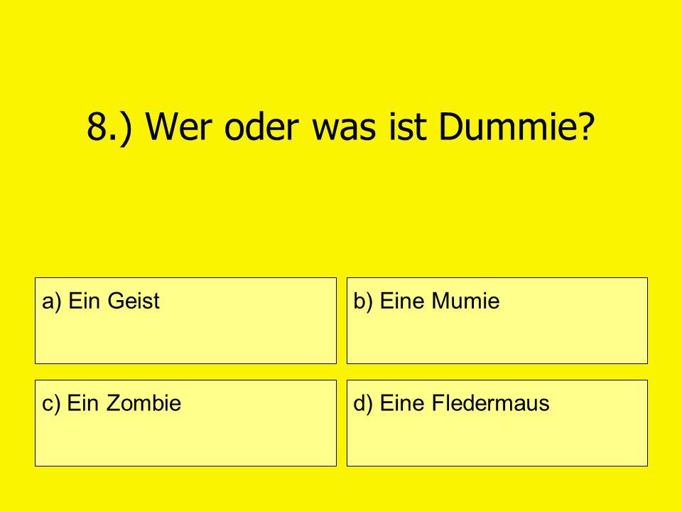 8.) Wer oder was ist Dummie