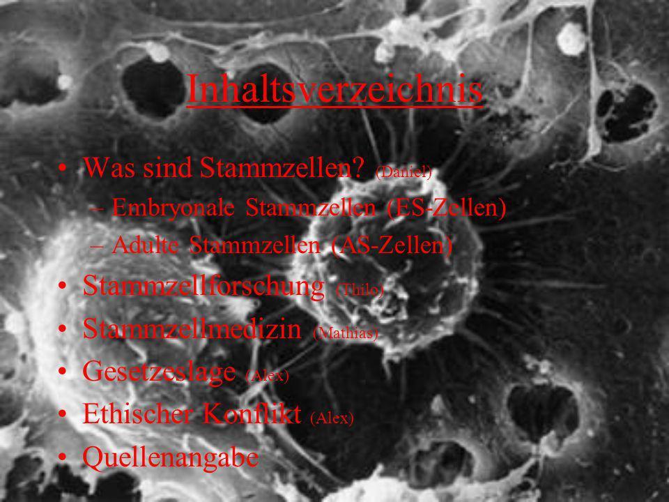 Inhaltsverzeichnis Was sind Stammzellen (Daniel)