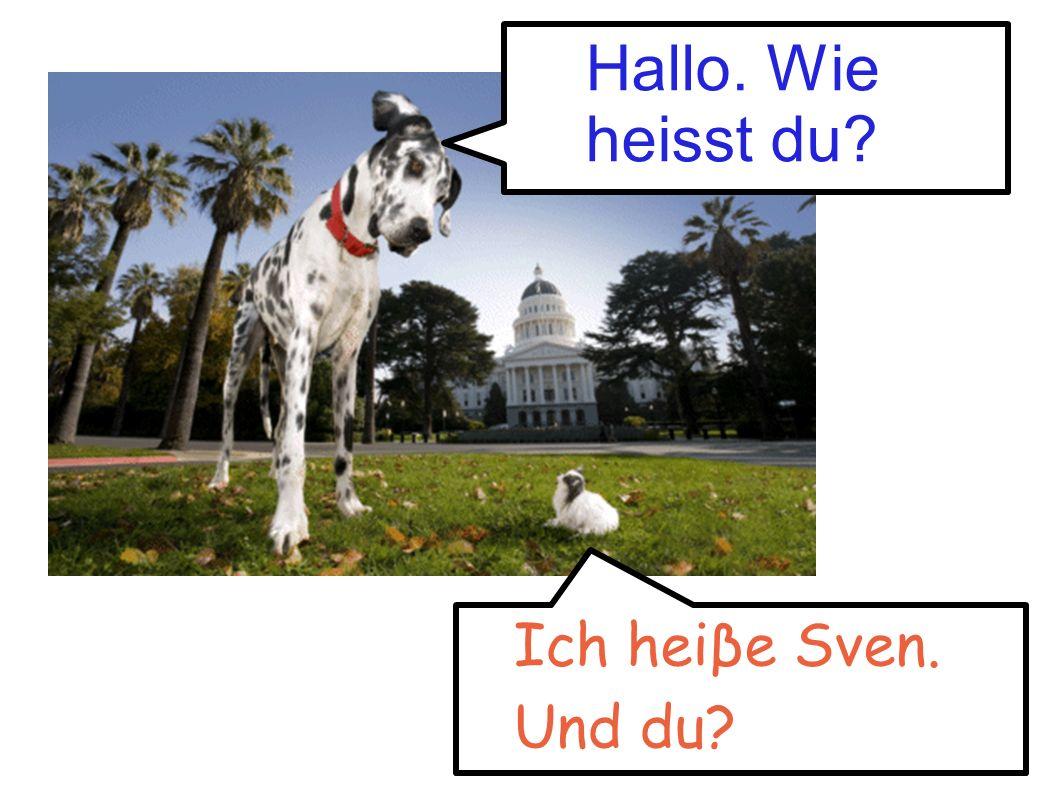 Hallo. Wie heisst du Ich heiβe Sven. Und du