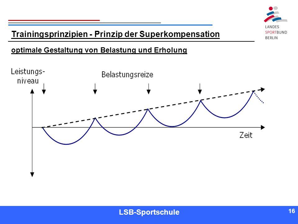 Trainingsprinzipien - Prinzip der Superkompensation